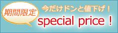 スペシャル価格の扇子